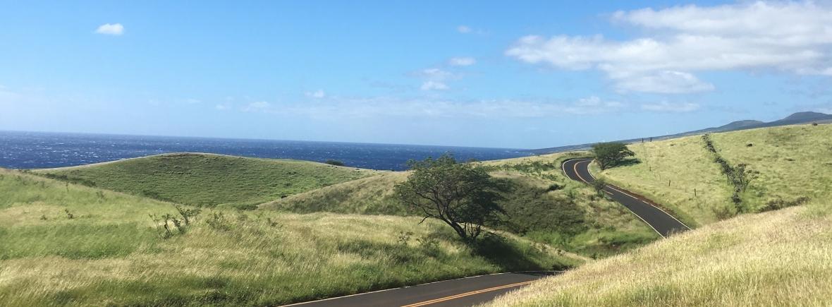 Road to Hana Travel Photo